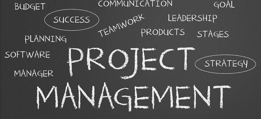 project manager digitale